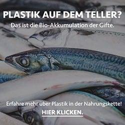 plastikfrei-leben-blog-plastik-essen-nahrungskette.jpg