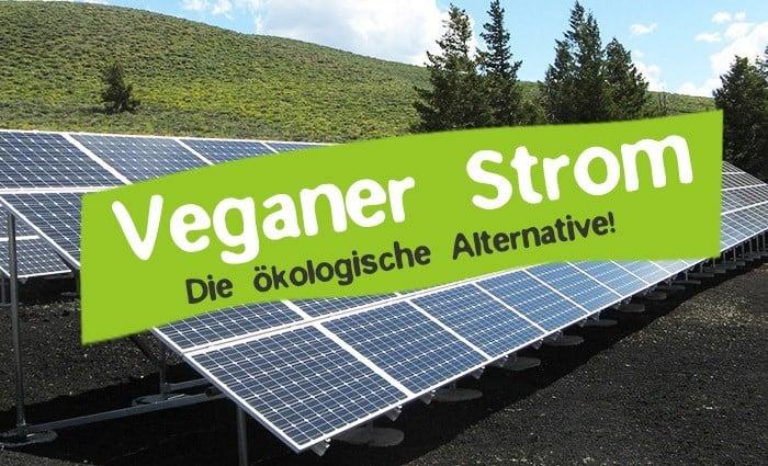Veganer Strom und Ökostrom - Die ökologische Elektrizität