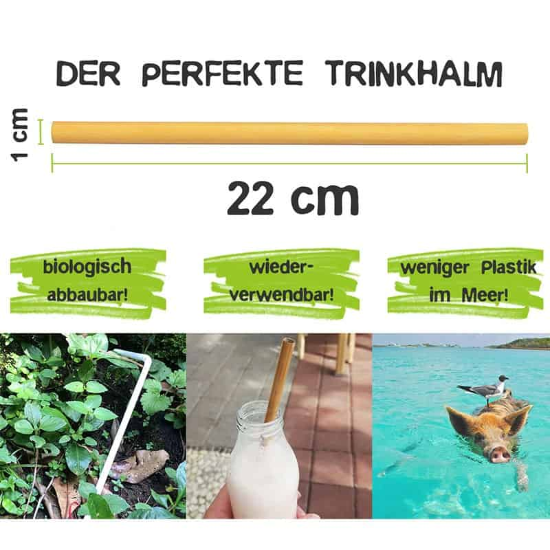Plastikfreie Bambus Strohhalme Bio Trinkhalme Careelite