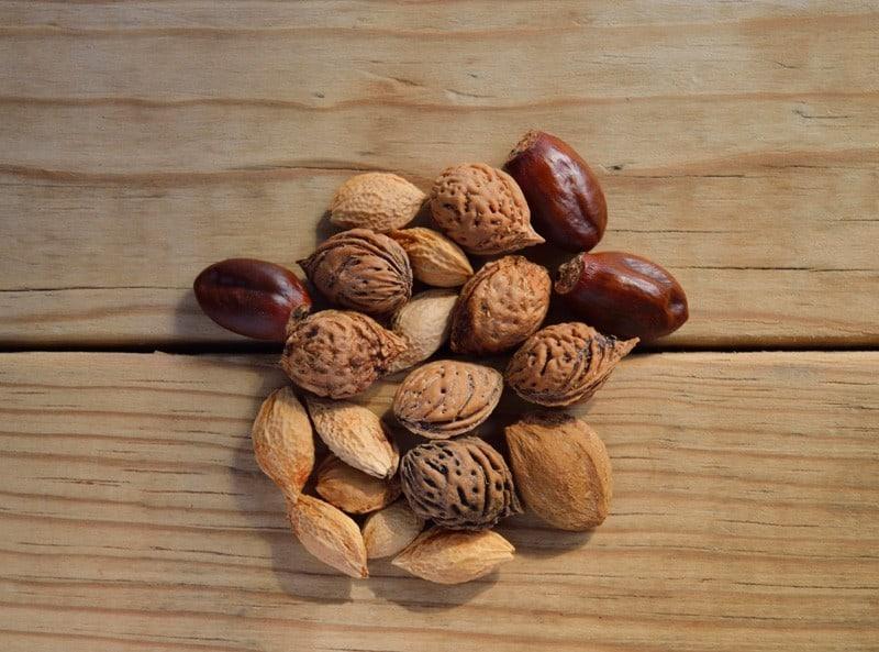 Verschiedene Nüsse als Vegane Proteinquelle zum Proteine vegan abdecken
