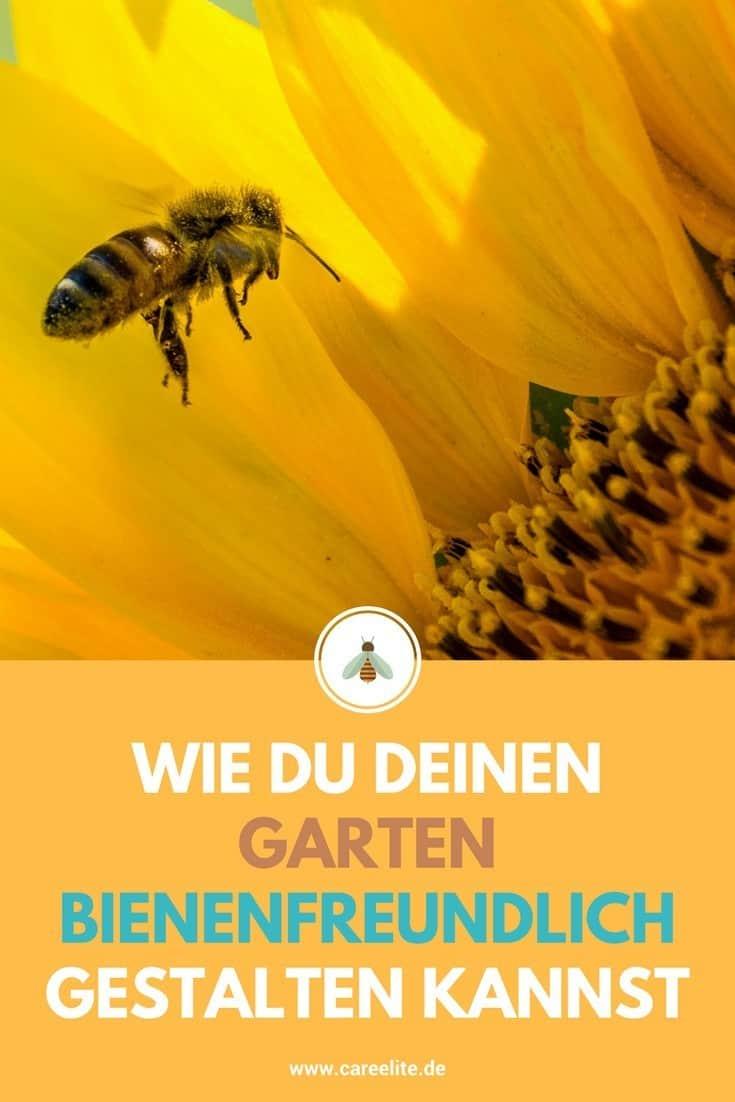 Bienenweide Garten bienenfreundlich gestalten