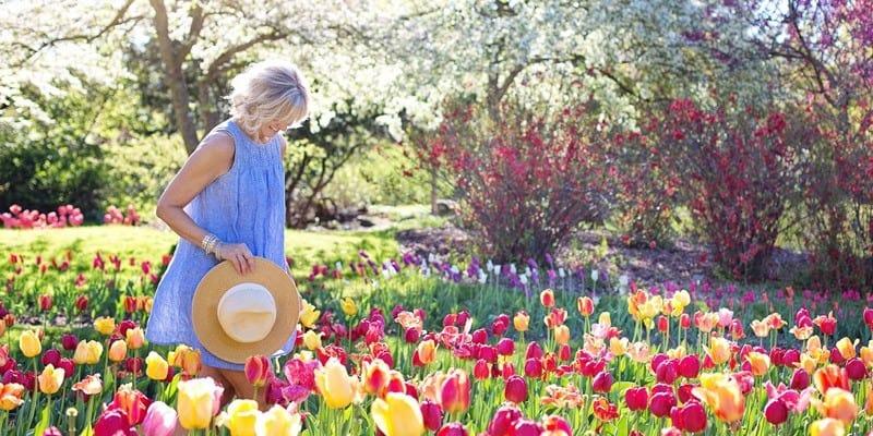 Bienenwiese Garten bienenfreundlich gestalten - Pflanzen