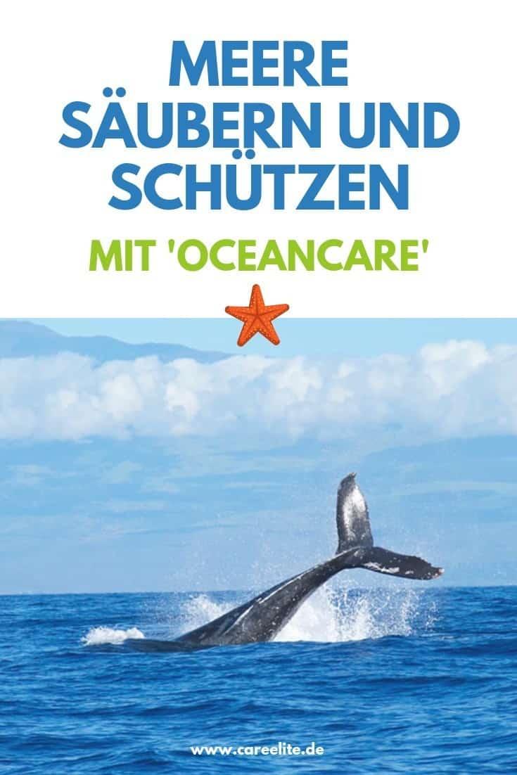 Ocean Care Meere schützen