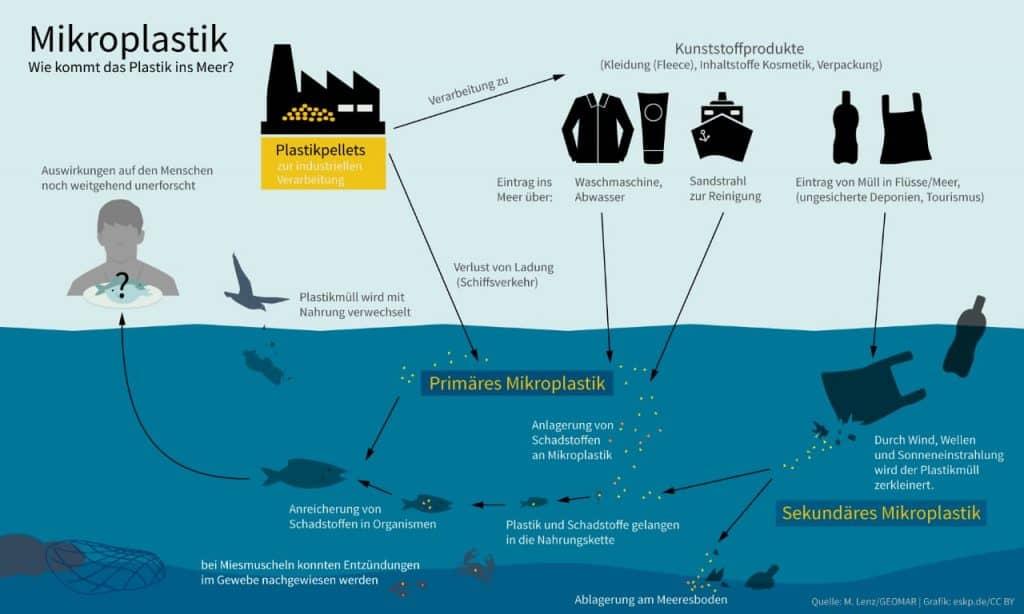 Kreislauf - Mikroplastik im Meer