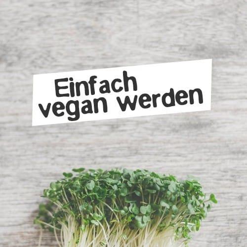Online Kurs Vegan werden und starten