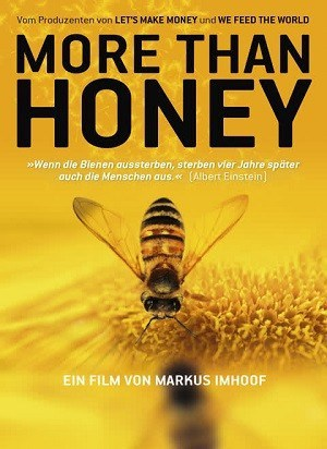 More than honey - Dokumentation Nachhaltigkeit