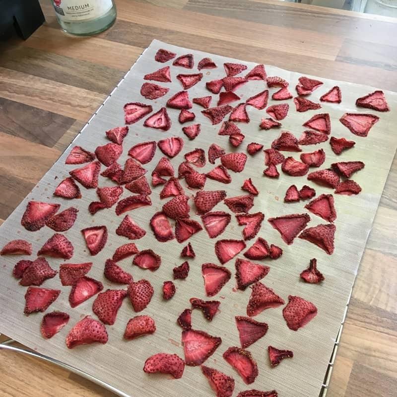 Erdbeeren trocknen auf Einschub im Dörrautomat