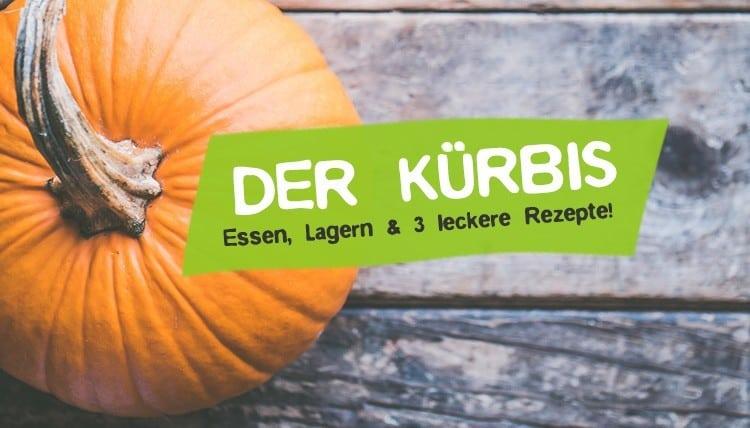 Der Kürbis - Essen, Lagern & Rezepte