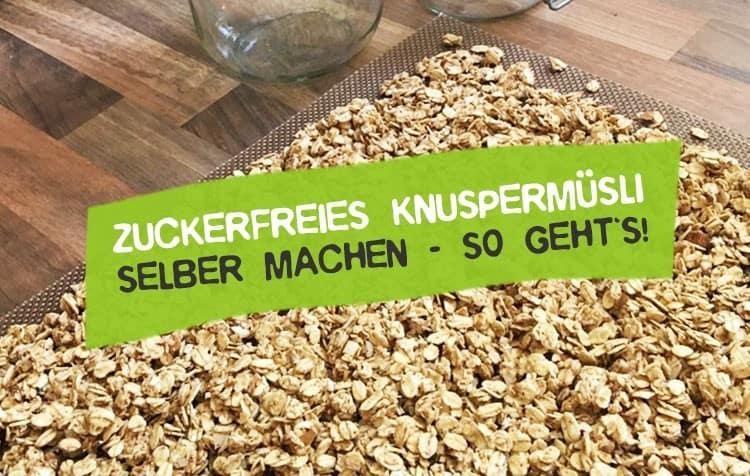 Zuckerfreies Müsli selber machen - vegan ohne Zucker