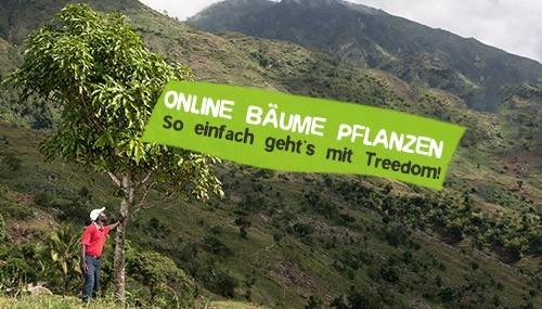 Treedom - Online Bäume Pflanzen
