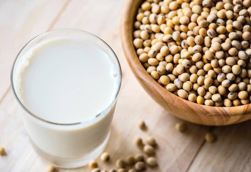 Pflanzliche Milch vegan und nachhaltig Ernährung Tipps