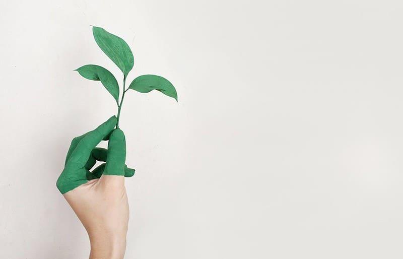 Nachhaltige Versicherungen Vergleich Nachhaltigkeit Versicherung versichert