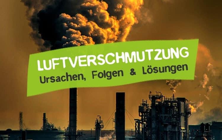 Luftverschmutzung - Ursache, Folgen und Lösungen des Umweltproblems