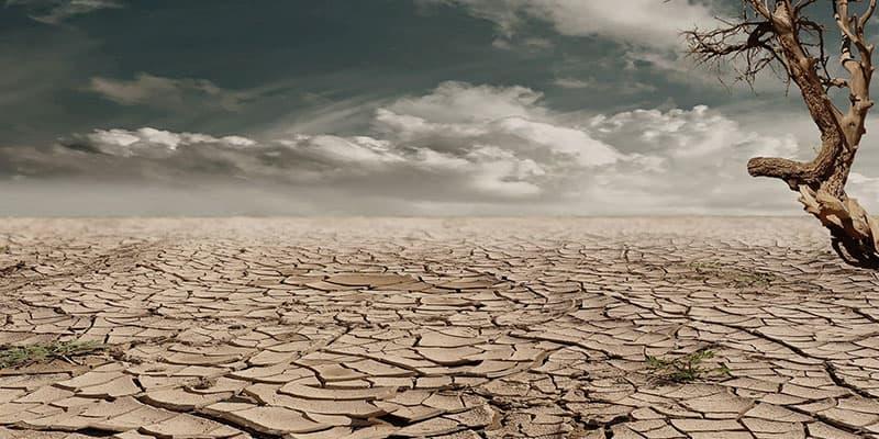 Umweltprobleme unserer Zeit- Ursachen und Lösungen - Überbevölkerung