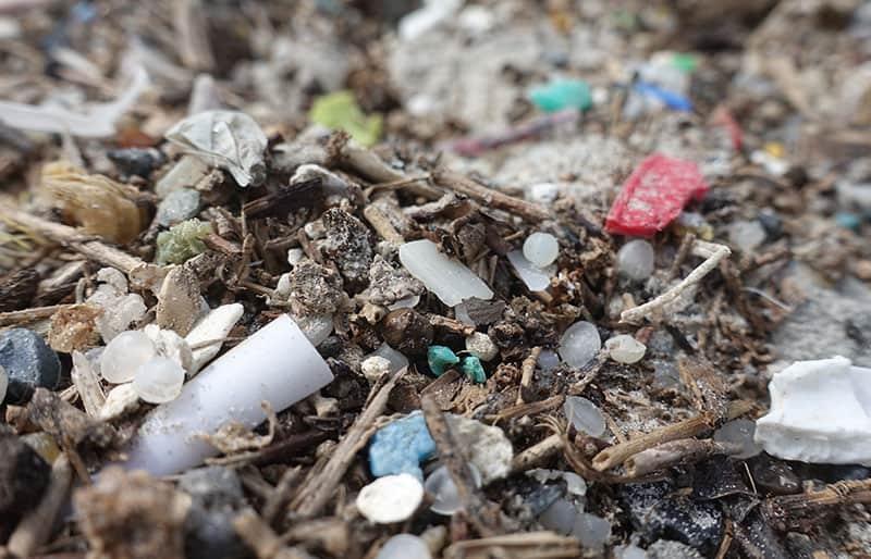 Plastik Alternativen aus der Forschung