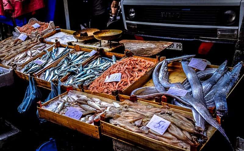 Überfischung der Meere - Ursachen?