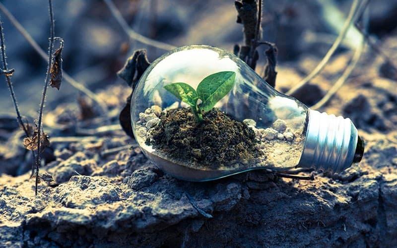 Nachhaltige alternative Suchmaschine zu Google