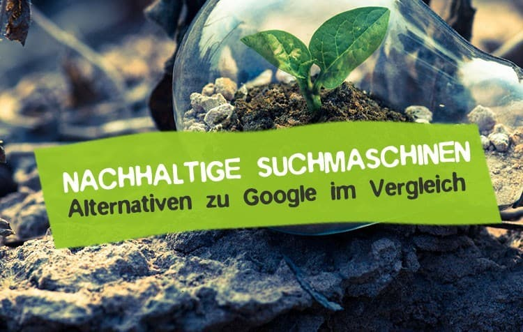 Nachhaltige Suchmaschinen als Alternative zu Google
