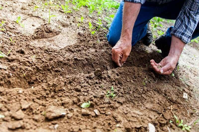 Folgen des Umweltproblems der Bodenerosion