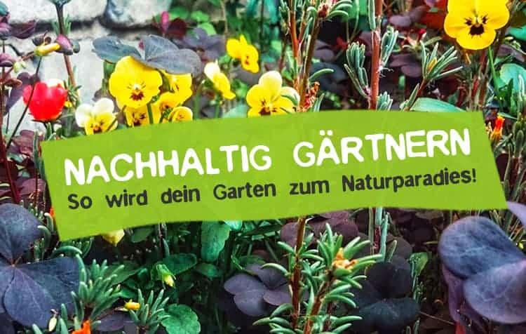 Nachhaltig gärtnern und Naturgarten gestalten