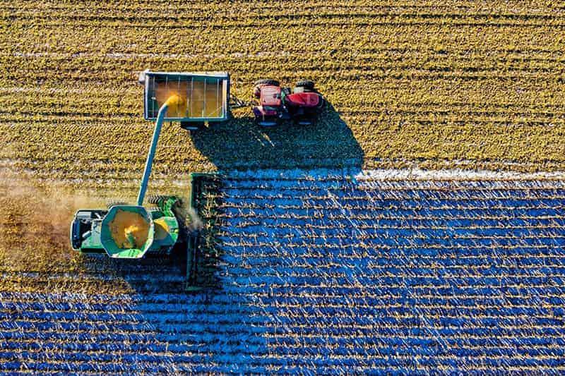 Ursachen des Umweltproblems der Bodenerosion