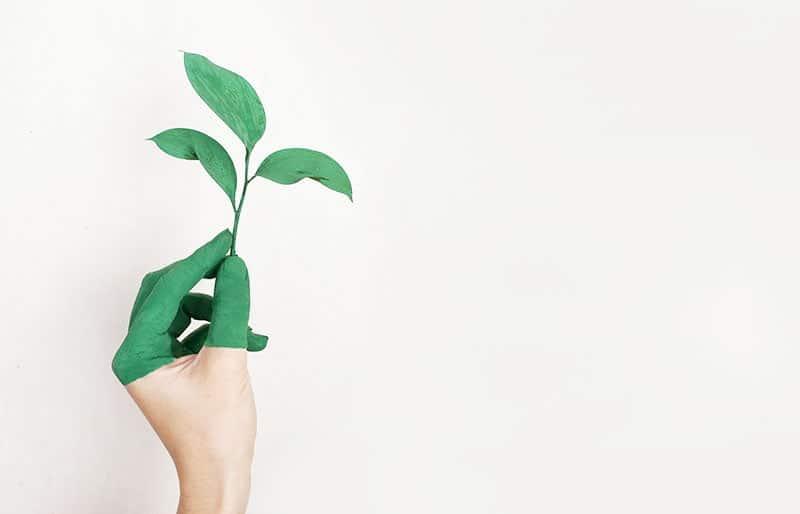 Warum spart ein nachhaltiger Lebensstil Geld ein?