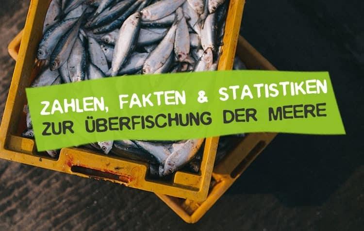 Statistiken Daten und Fakten zur Überfischung der Meere
