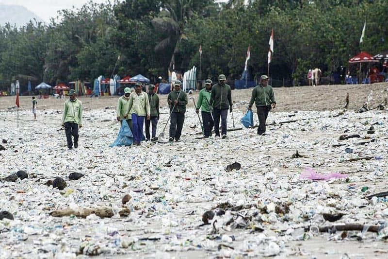 Fakten zum Plastikmüll in der Natur