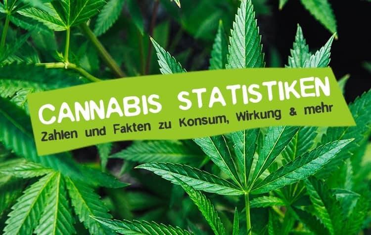 Cannabis: Statistiken, Fakten und Zahlen