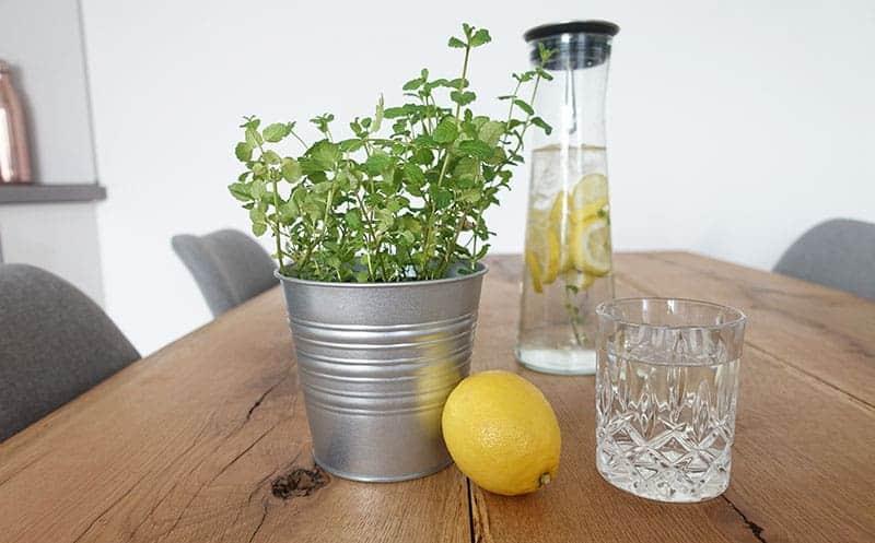 Leitungswasser für möglichst plastikfreies Leben