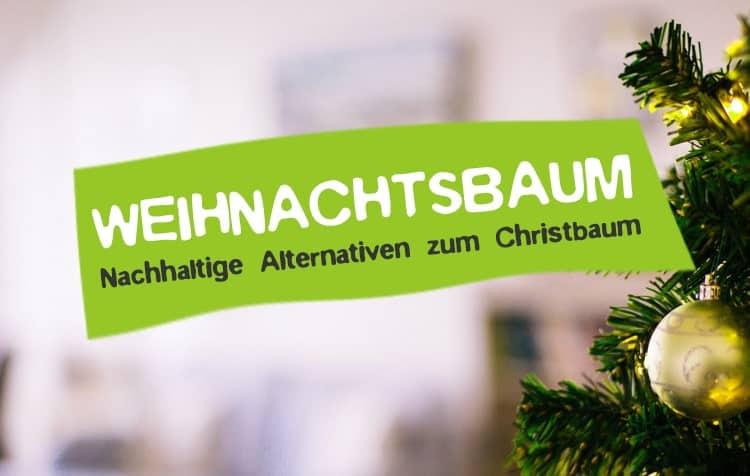 Nachhaltiger Weihnachtsbaum und umweltfreundliche Entsorgung