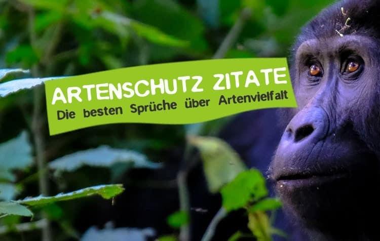 Artenschutz Zitate - Sprüche gegen das Aussterben von Arten