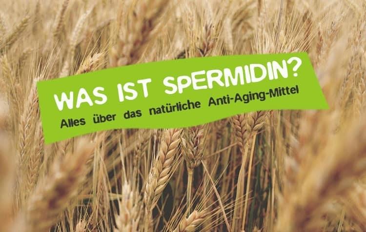 Spermidin Was ist das? Alles über das Anti-Aging Mittel