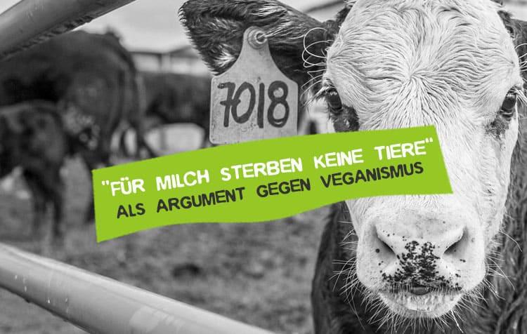 Für Milch sterben ja keine Tiere