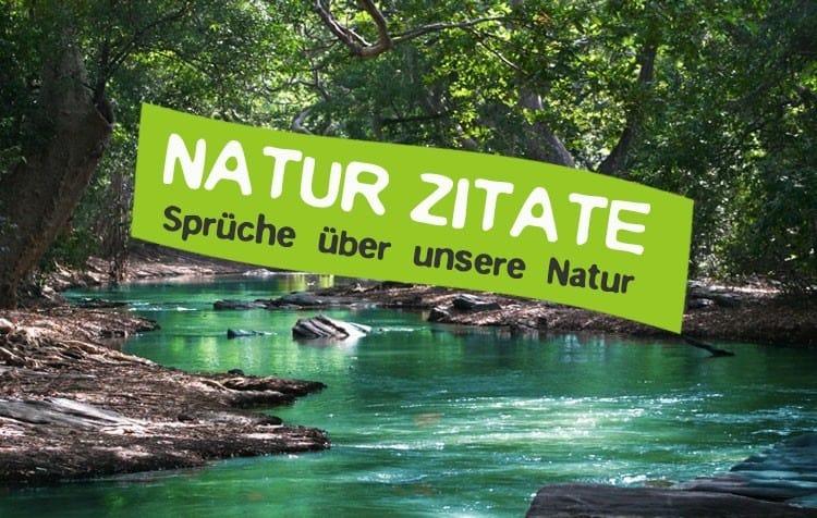 Natur Zitate und Sprüche unsere Welt