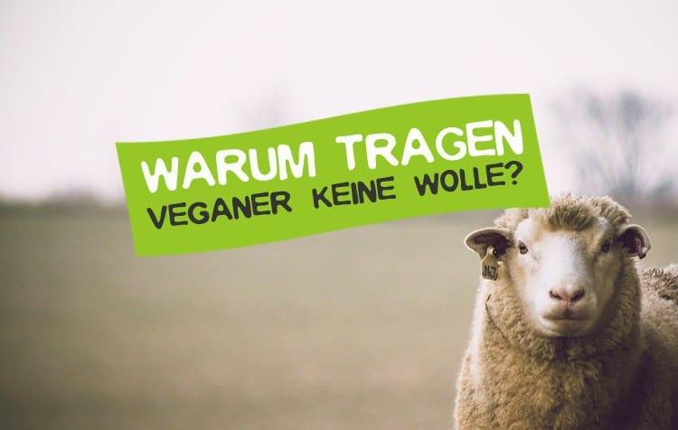 Warum tragen Veganer keine Wolle?