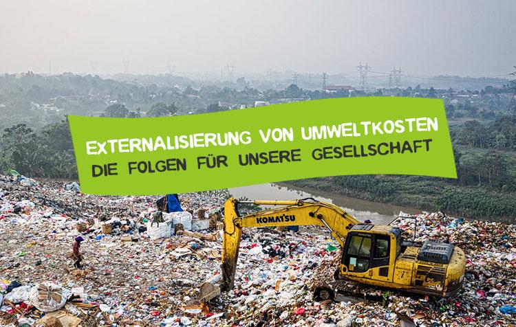 Externalisierung von Umweltkosten