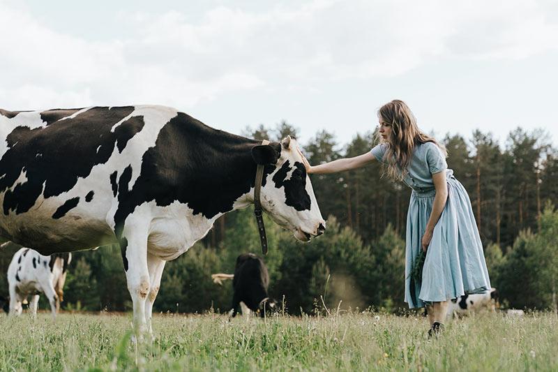 Frau im Kleid streichelt Kuh