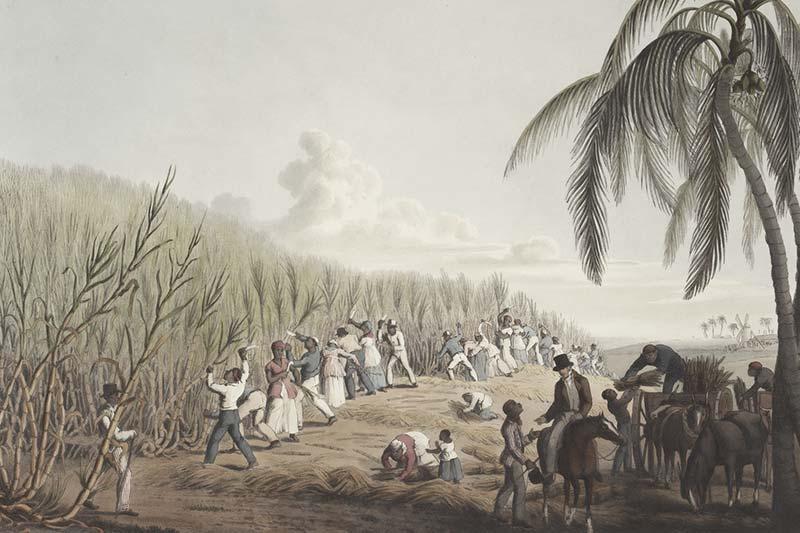 Sklaverei war erlaubt - das macht sie nicht moralisch vertretbar