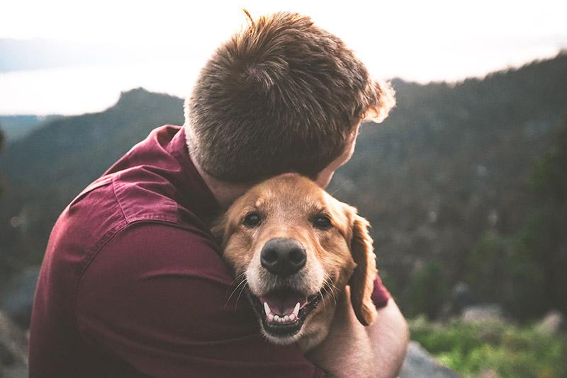 Von Tieren lernen - Lebensfreude im Fokus