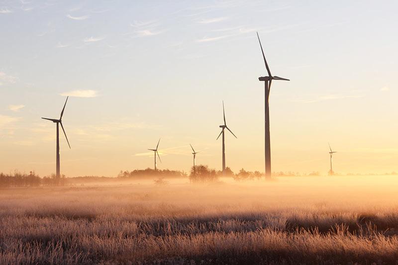 Ökologischen Fußabdruck durch grünen Strom reduzieren