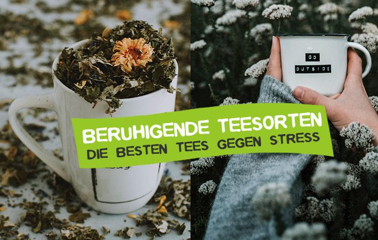 Beruhigende Teesorten gegen Stress