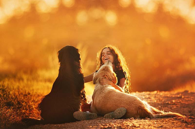 Gemeinsamkeiten zwischen Menschen und Tieren