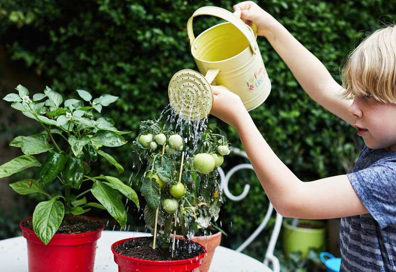 Kind gießt die Blumen