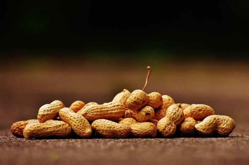 Erdnüsse liefern viel Vitamin B6