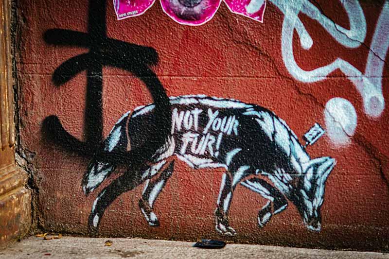 Nicht dein Fell - Veganes Graffiti