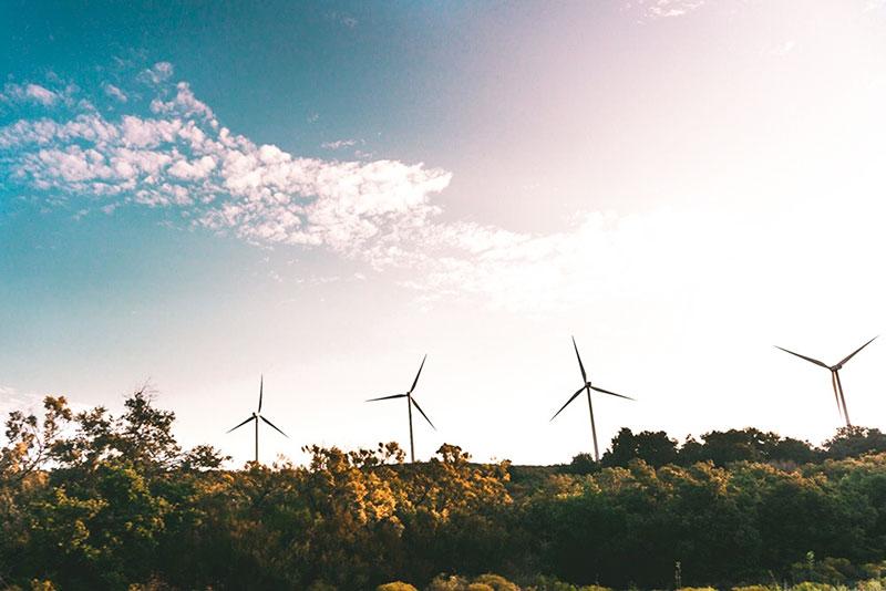 Windkraftanlagen im Grünen