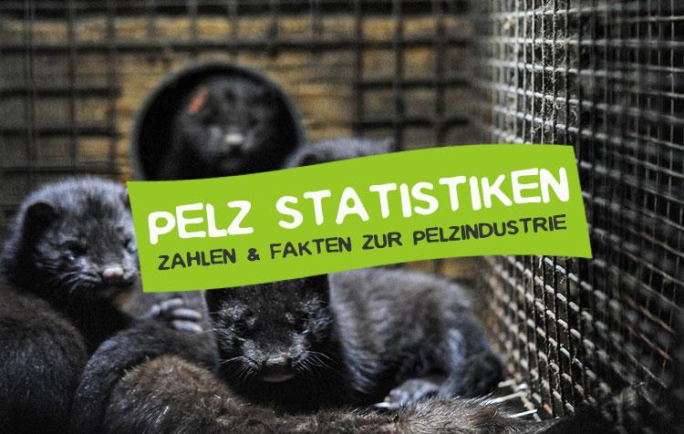 Pelz Statistiken, Zahlen und Fakten