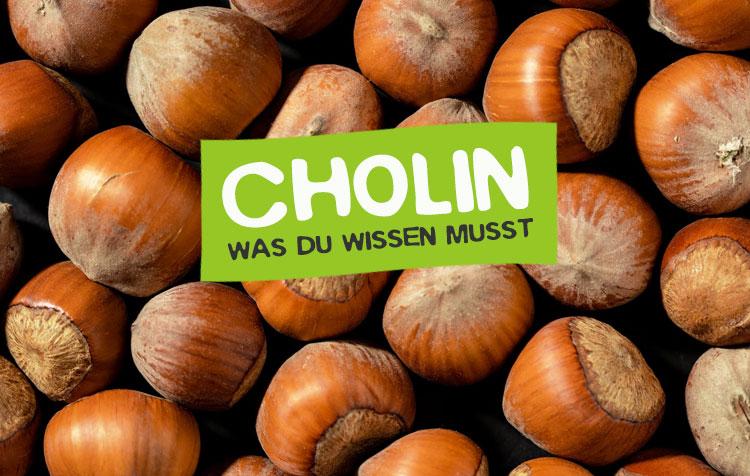 Cholin (Vitamin B4) Steckbrief