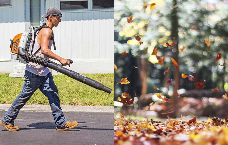 Are leaf blowers harmful to the environment? All disadvantages at a glance